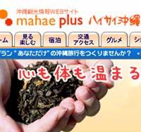 沖縄観光情報サイト「真南風プラス」でくるくまショップ紹介