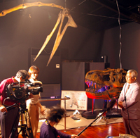 化石ミュージアム、テレビに登場