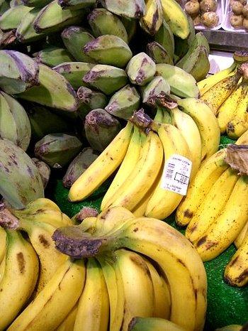 banana-20080425%2C%20047.jpg